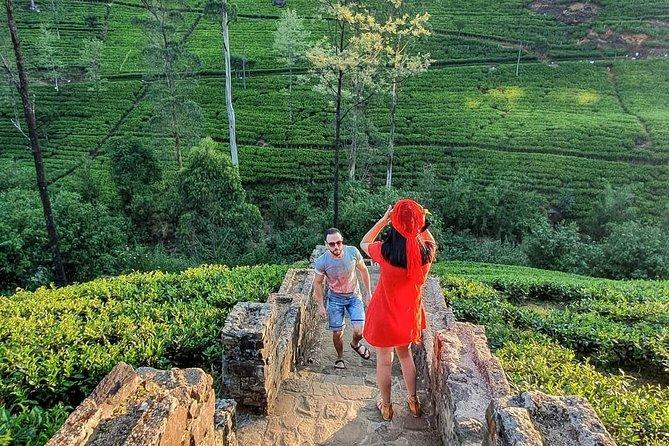 Explore the Beauty of Sri Lanka in 5 Days