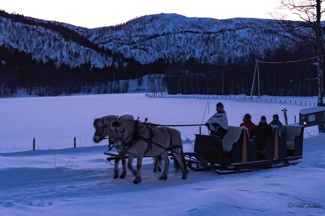Sleigh Ride w/ Tapas Meal - Experience Arctic Farm Life photo 4