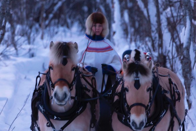 Sleigh Ride w/ Tapas Meal - Experience Arctic Farm Life photo 1