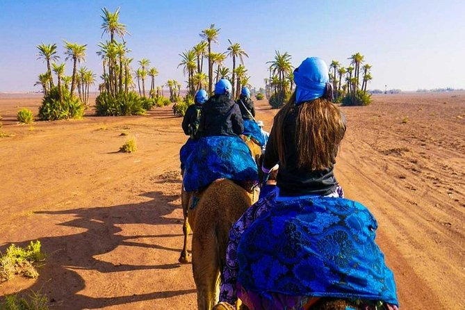 Sunset Camel Ride Tour In Marrakech Palm Groves