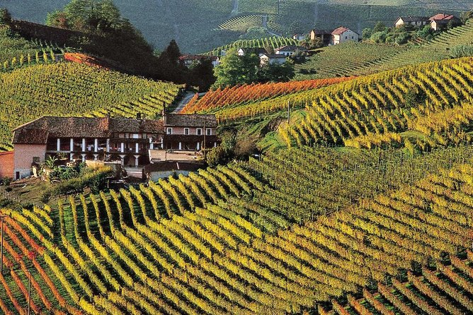 Private tour from Turin: Full day Langhe Region with its Colors and Flavors