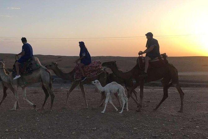 Quad Biking & Sunset Camel Ride Tour With Dinner At Marrakech Agafay Desert