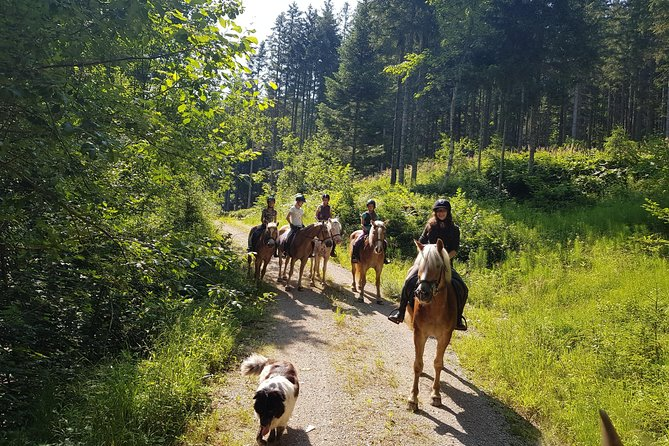 Trail riding in the Gesaeuse National Park