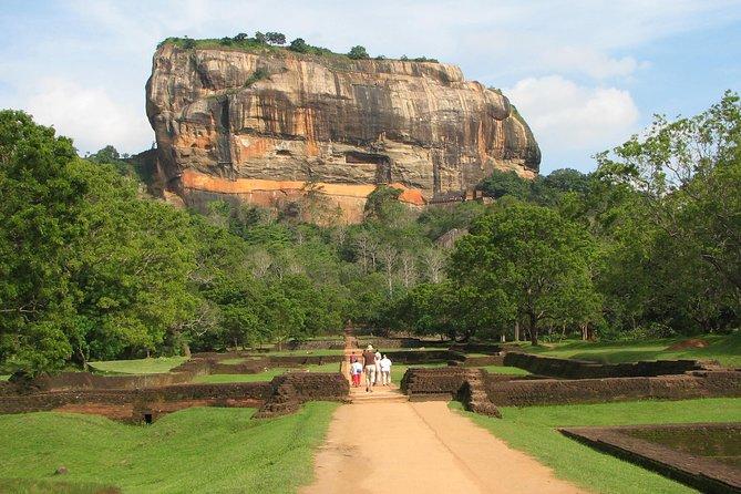 Day Tour to Sigiriya Rock Fortress & Dambulla Cave From Negombo.