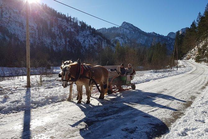 Sleigh ride in the Wildalpen
