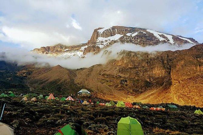 9 Days 8 nights Mt Kilimanjaro trekking via Machame route Tanzania