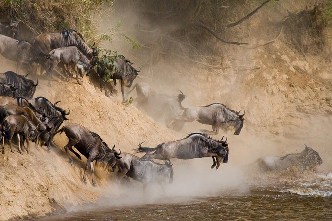WILDBEEST GREAT MIGRATION Adventure Safari in Northern Tanzania national parks