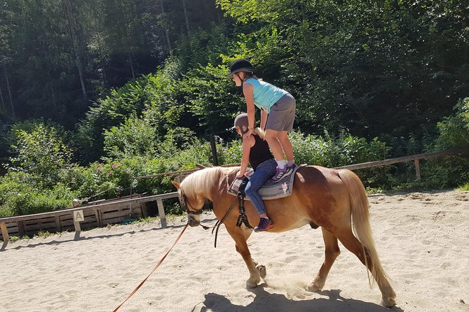 Equestrian adventure day for big and small horse lovers