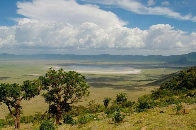 4 Days Safari Serengeti,Manyara, and Ngorongoro photo 1