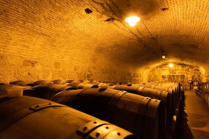 Private Lujan Wine Tour with Gourmet Wine-Paired Lunch from Mendoza