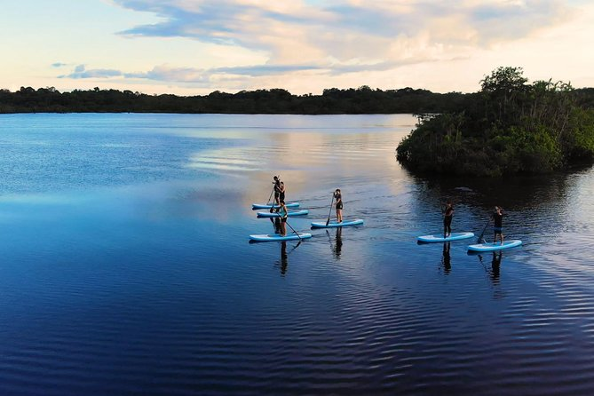 4 Days Paddle Board at the Cuyabeno Reserve