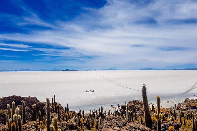 Uyuni Salt Flats - 3Days/2Nights + Bus La Paz - Uyuni - La Paz