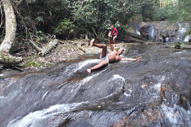 Swim in the waterfalls of tijuca forest + favela overview