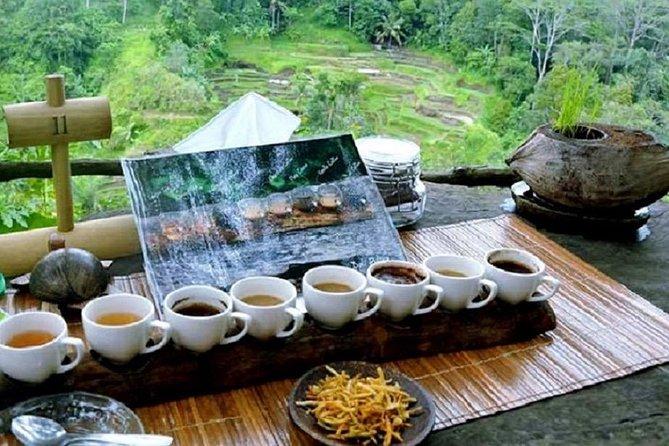 Full-Day : Kintamani Volcano - Jungle Swing - Rice Terrace - Waterfall - Temple