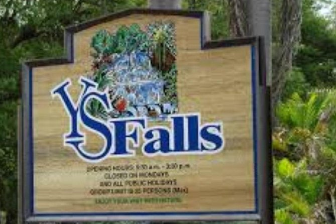 YS Falls / Black River Safari / Pelican Bar Tour ( southcoast ) photo 1
