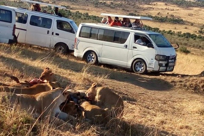 6 Days Aberdare, Lake Naivasha and Maasai Mara Safari