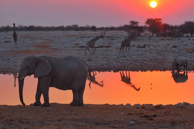 2 Days Tarangire & Lake Manyara Budget Camping Safari photo 6