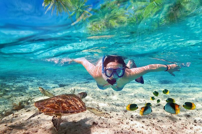 V.I.P Snorkeling & Fishing Tour ( Speed Boat ) Small Group