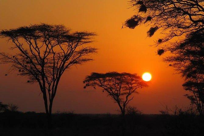3 days Meru National Park Safari