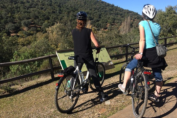 Countryside Bike Tour in Seville