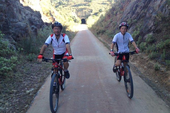 Seville Mountain Bike Guided Tour