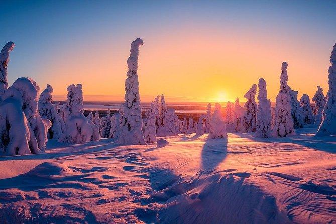 Magic of Lapland – Hiking Tour to Riisitunturi National Park