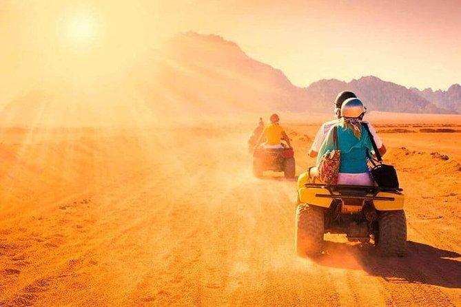 Enjoy Desert Safari in Morning