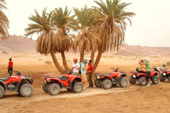 Bedouin Desert Safari & Quad Biking In Hurghada