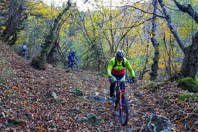 7 Days of non-stop Adventure & Extreme from Tbilisi