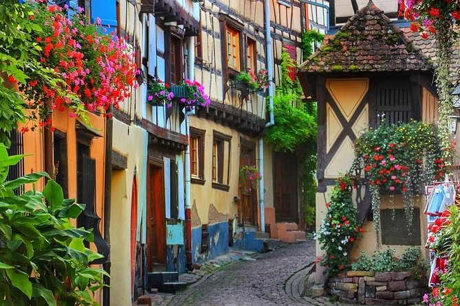 Alsace Wine Route & Local Villages Discovery Day Tour from Strasbourg