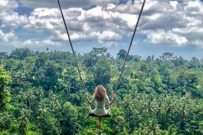 Bali Private Ubud Tour & Bali Swing Rice Field - Include All Tickets Entrance photo 4