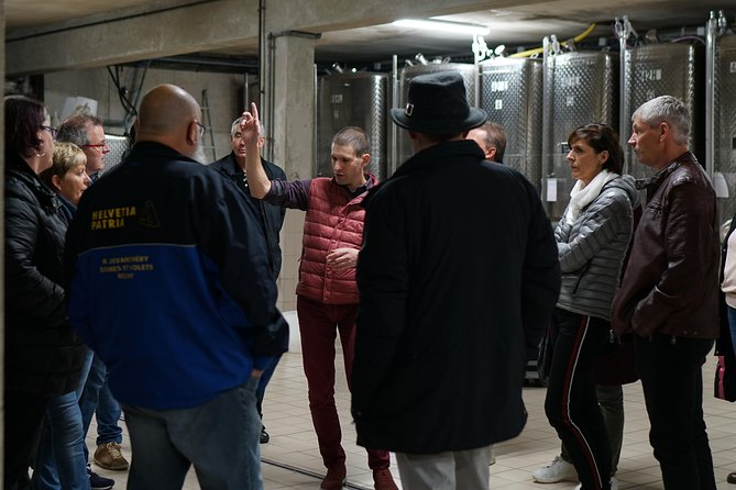 Exclusive tour: in the skin of the winemaker