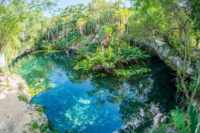 Swim in cenote tour with private guide from Tulum hotels
