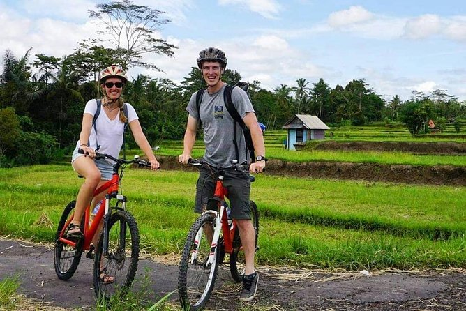 Tetebatu Cycling Tour | Rice Terraces, Waterfall, And Monkey Forest