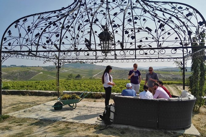 Douro Valley Small Group Tour: Visit Three Wineries with Wine Tastings and Lunch photo 12