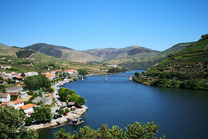 Douro Valley Small Group Tour: Visit Three Wineries with Wine Tastings and Lunch photo 7