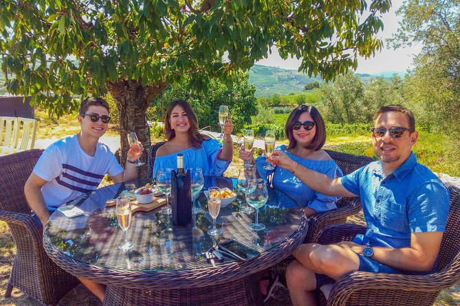 Private Douro Valley Tour - Visit Three Wineries with Wine Tastings and Lunch