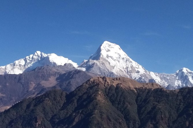 Short Ghorepani Poon Hill Trek – 2 Days