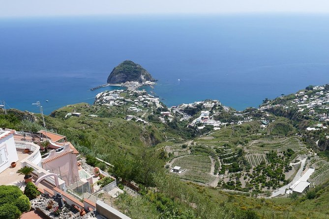 Day Trip to Ischia from Sorrento: Sightseeing & Tasty Food Tour with Local Guide