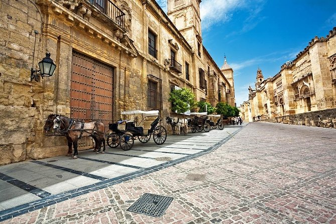 Andalusian Feelings with Madrid - Cultural Experience