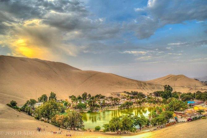 Full Day Ballestas Islands + Huacachina, the oasis of America + Ica Desert