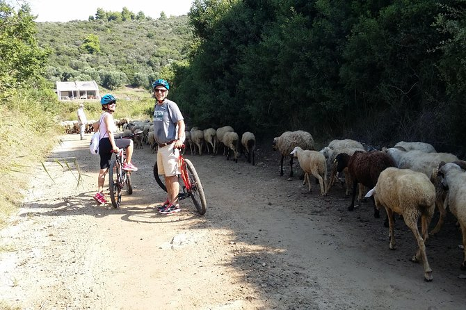 Sithonia cycling tours photo 7