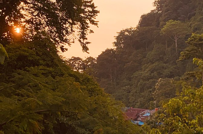 Half-day orangutans adventure in Gunung Leuser photo 10