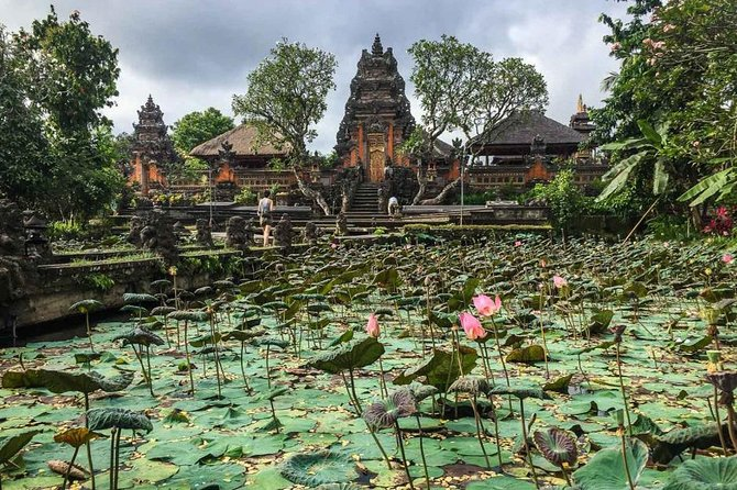 Ubud Instagram Spots Tour - One Day Private Trip photo 7