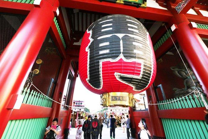 Tokyo Highlights Private Tour: Asakusa, Akihabara, Shibuya, and Meiji Shrine