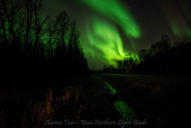 Small Group up to 8 people Aurora Borealis - Northern lights - Night Tour.