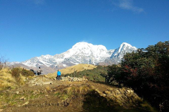 Mardi Himal Trek - Trail Hiking in Nepal