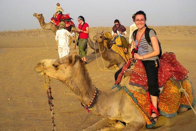 Jodhpur Day Tour Enjoy Sunset with Camel Safari