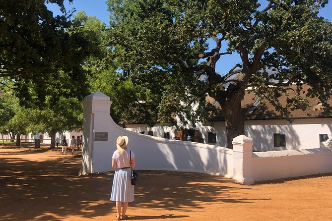 Full-Day Private Stellenbosch Wine Pairing and Food Tasting Tour from Cape Town