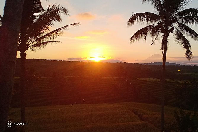 Sunrise Trekking at Jatiluwih Rice Terrace